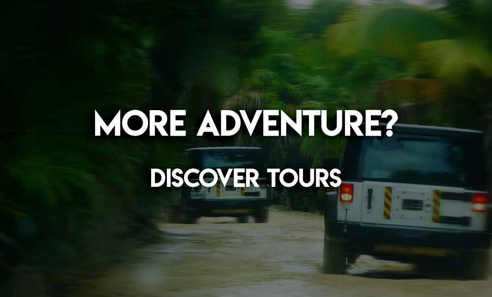 discover-the-tours-mayavacanze