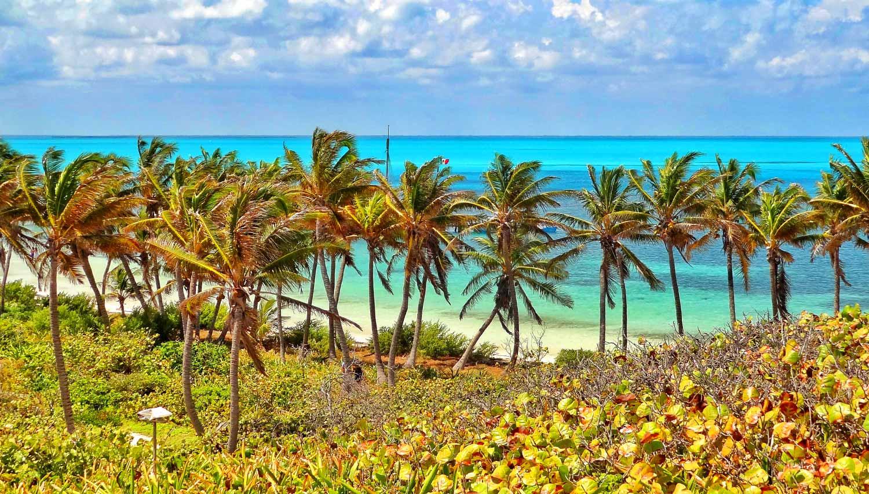 isla-contoy-cosa-vedere2-mayavacanze